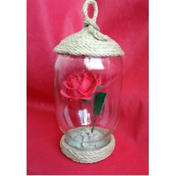 Роза  в стъкленица